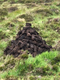 A common sight--piles of freshly cut peat, drying in the fields.